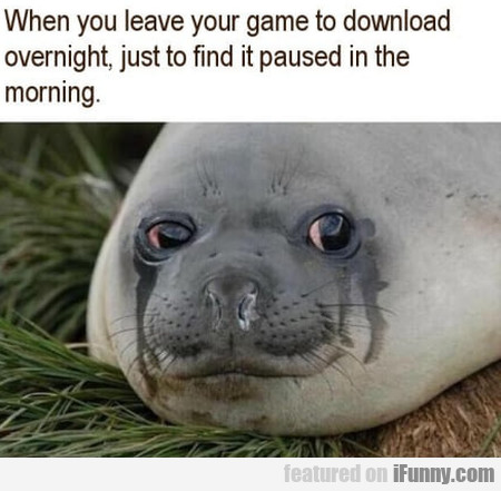 When You Leave Your Game To Download Overnight...
