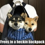 Frens In A Heckin Backpack