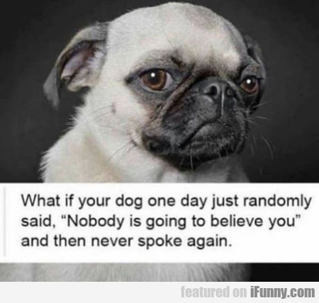What If Your Dog One Day Just Randomly Said...