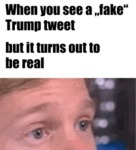 When You See A Fake Trump Tweet - But It Turns...