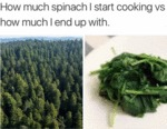 How Much Spinach I Start Cooking Vs How Much...