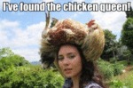 I've Found The Chicken Queen!