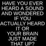 Have You Ever Heard A Sound And Wondered If You...