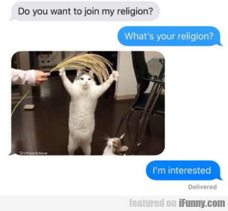 Do you want to join my religion? - What's your...
