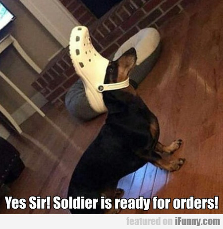 Yes Sir! Soldier Is Ready For Orders!