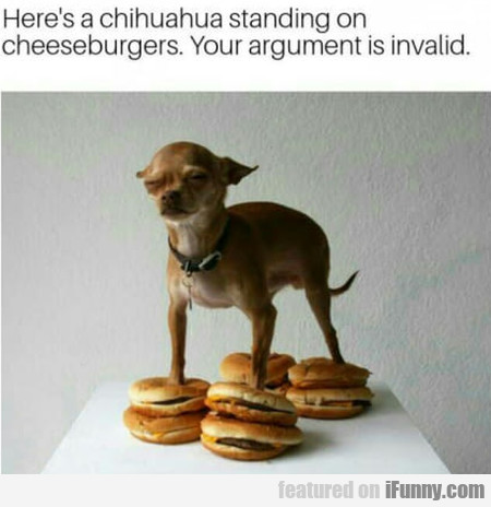 Here's A Chihuahua Standing On Cheeseburgers