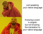Just Speaking Your Native Language - Knowing A...