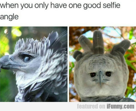 When You Only Have One Good Selfie Angle