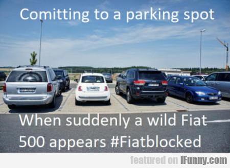 Comitting to a parking spot - When suddenly a...