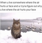 When U Live Somewhere The Air Hurts Ur Face And...