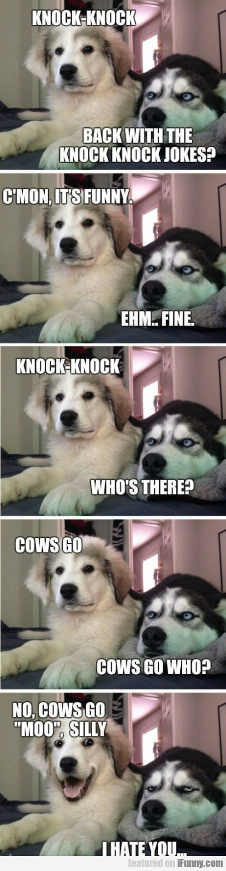Knock-knock - Back With The Knock Knock Jokes?