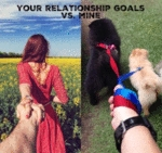 Your Relationship Goals Vs Mine
