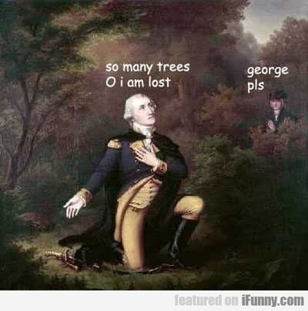 So Many Trees O I Am Lost - George Pls