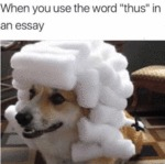 When You Use The Word ' Thus ' In An Essay...