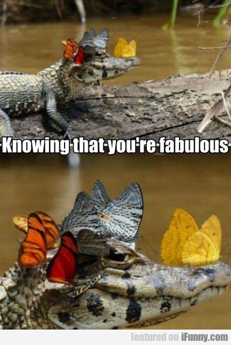 Knowing That You're Fabulous