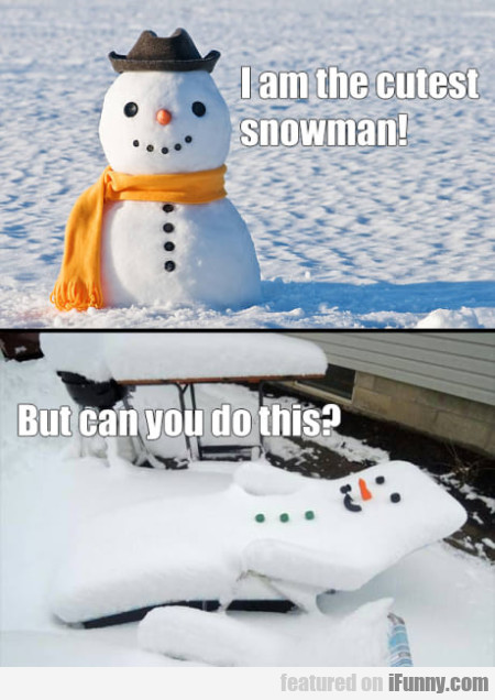 I Am The Cutest Snowman! But Can You...