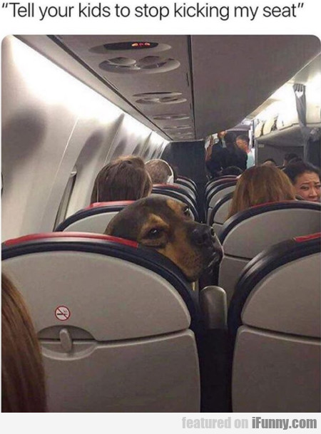 Tell Your Kids To Stop Kicking My Seat