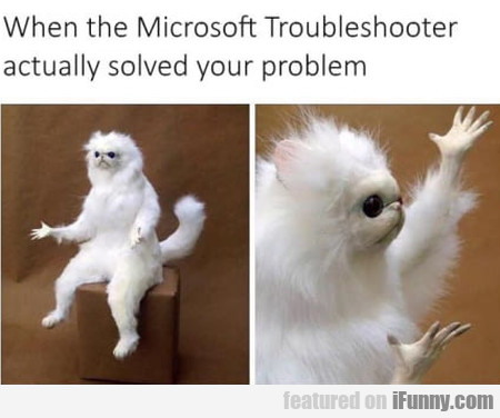 When The Microsoft Troubleshooter Actually...