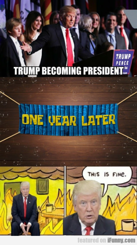 Trump Becoming President. One Year Later...