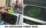 An Unfortunate Rubber Duck