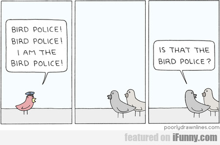 Bird Police! Bird Police! I Am The Bird Police!