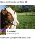 Cows Are Friends, Not Food - Name One Cow...