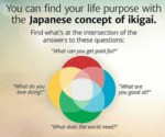 You Can Find Your Life Purpose With The Japanese..