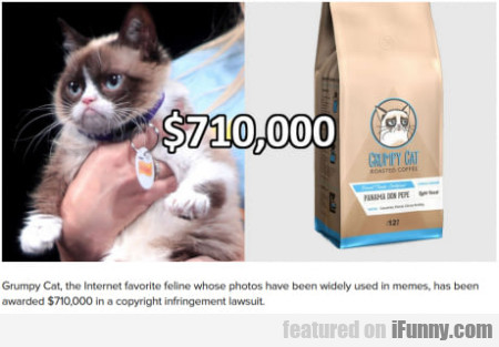 Grumpy Cat, The Internet Favorite Feline Whose...