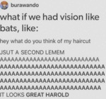 What If We Had Vision Like Bats, Like...