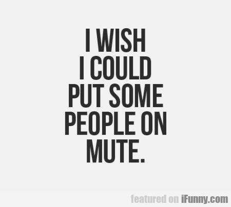 I Wish I Could Put Some People On Mute