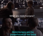 What Are Midichlorians? - Midichlorians Are The...