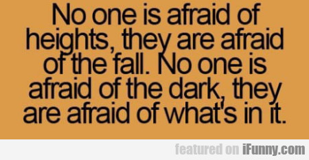 No One Is Afraid Of Heights, They Are Afraid...