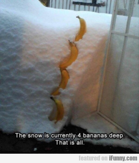 The Snow Is Currently 4 Bananas Deep. That Is All.