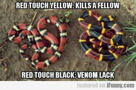 Red Touch Yellow - Kills A Fellow - Red