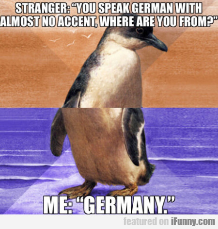 Stranger - You Speak German With Almost No...