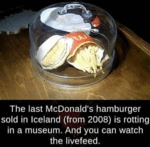 The Last Mcdonald's Hamburger Sold In Iceland...