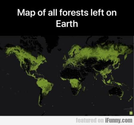 Map Of All Forests Left On Earth