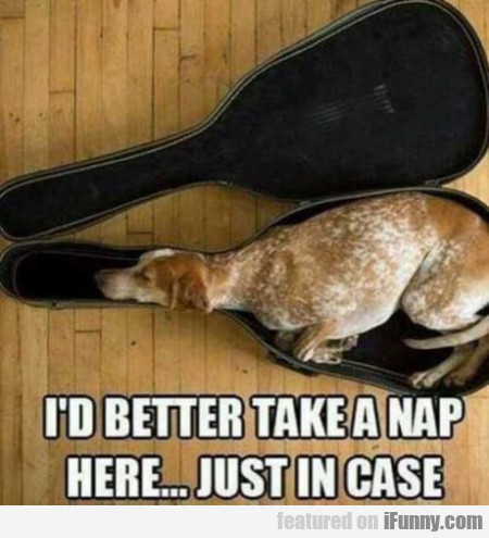 I'd Better Take A Nap Here... Just In Case