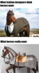 What Fashion Designers Think Horses Want..