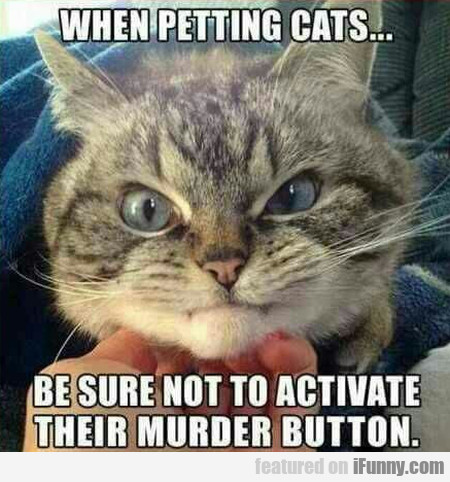 When Petting Cats... Be Sure Not To Activate...