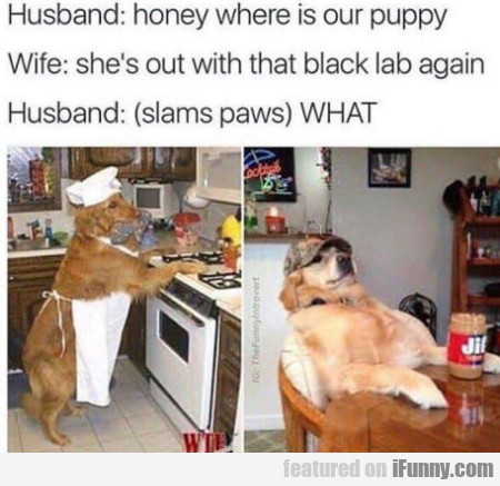 Husband: Honey Where Is Our Puppy? - Wife: