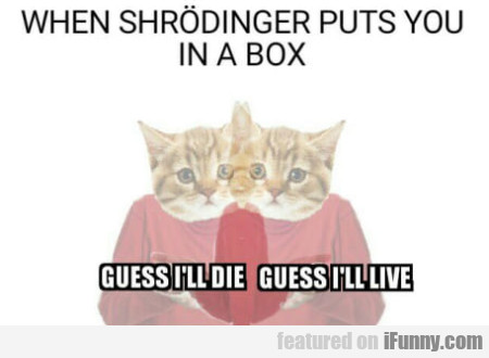 When Shrodinger Puts You In A Box...