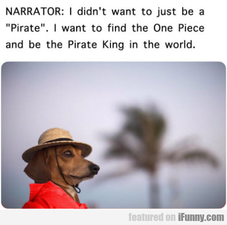 Narrator: I Didn't Want To Just Be A Pirate...