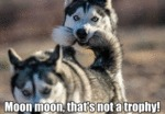 Moon Moon, That's Not A Trophy!