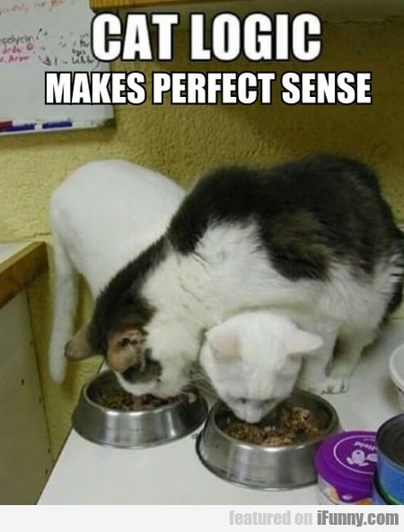 Cat logic makes perfect sense