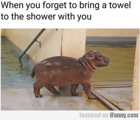 When You Forget To Bring A Towel To The Shower