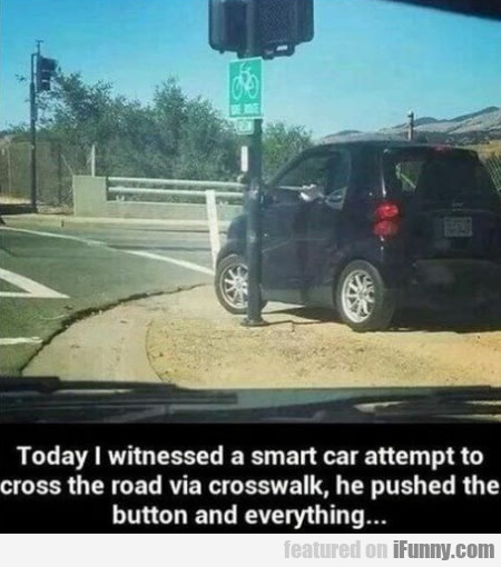 Today I Witnessed A Smart Car Attempt To Cross...