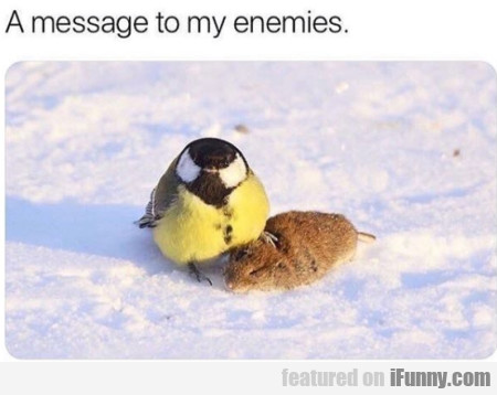 A message to my enemies