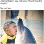 Atlantis Dolphin Bay Instructor - Gently Kiss...