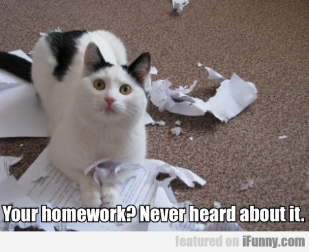 Your Homework? - Never Heard About It